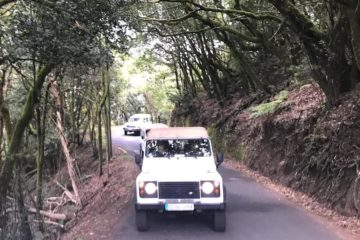 Jeep tour la gomera